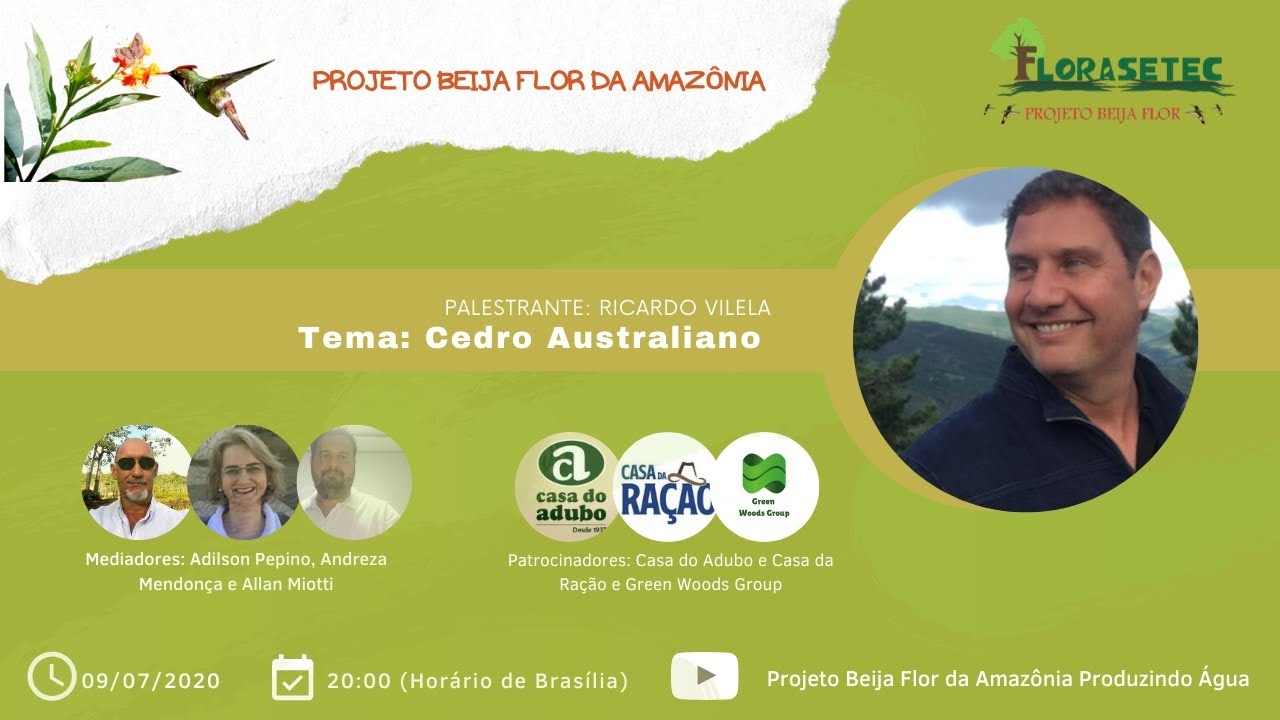 Live – Projeto Beija-Flor / Cedro australiano