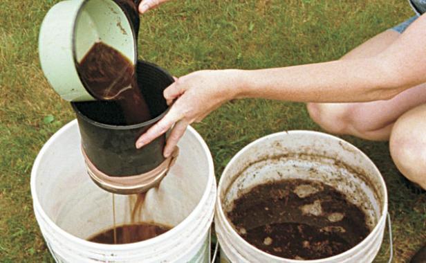 Compost Tea – Uma poderosa ferramenta da Agricultura Biológica